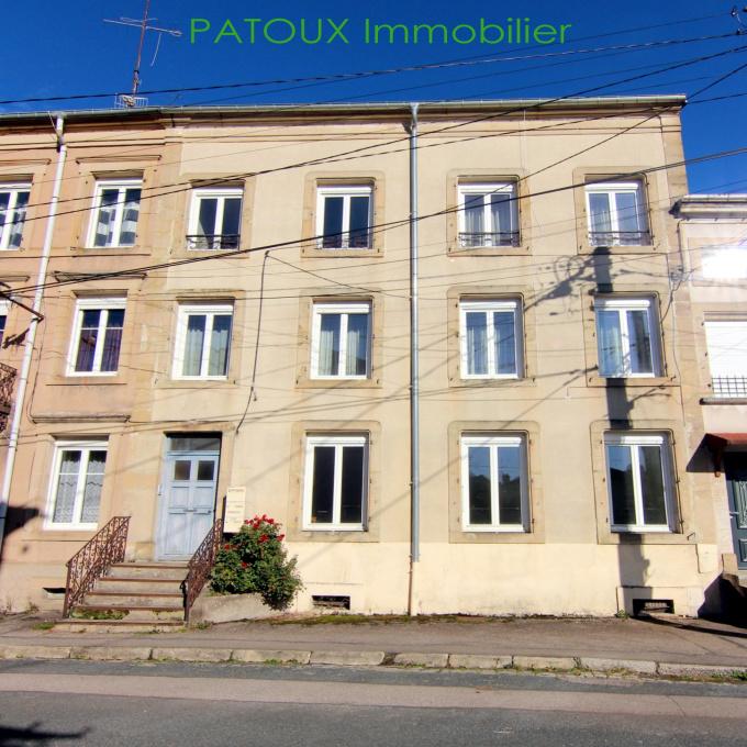 Offres de vente Immeuble Baccarat (54120)